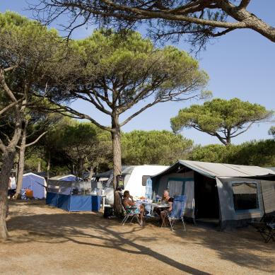 Parcelas del camping Interpals