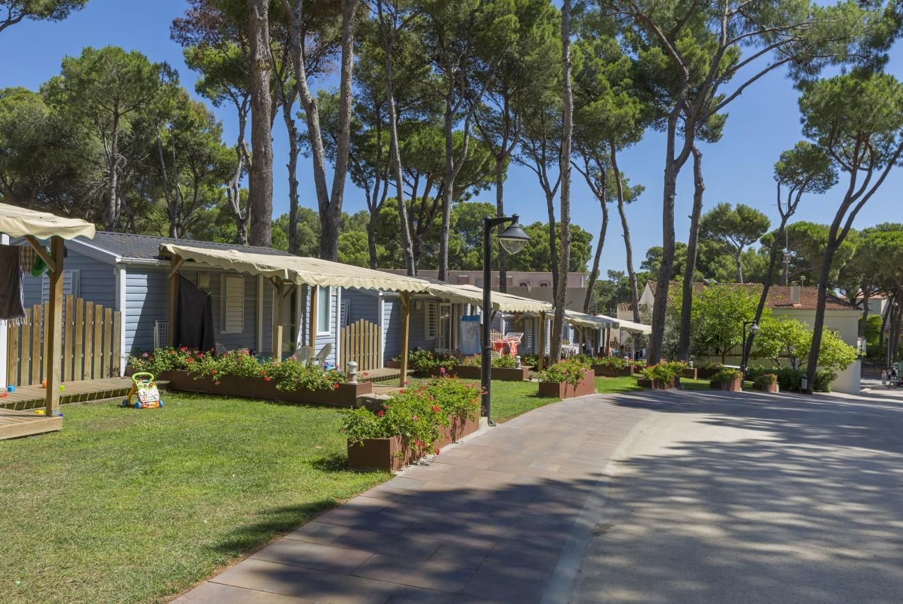 Bungalows Llevant Camping Interpals Spain