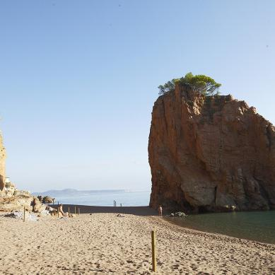 Roca de la playa de Pals