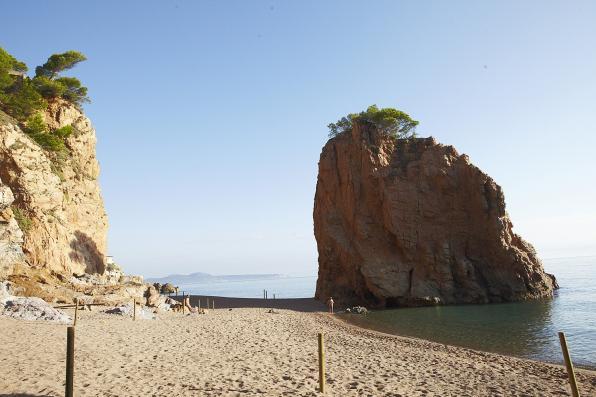 Roca en la playa de Pals